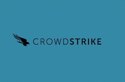Team Blue Crowdstrike