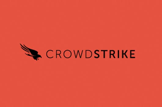 Team Red Crowdstrike