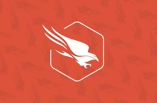 CrowdStrike Investors Double Down And Lead $100 Million Series D Round To Support The Company's Global Growth