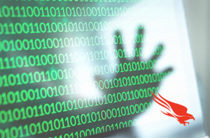 Hacker hand over binary code