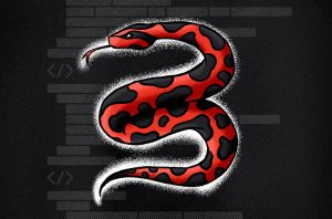 image of a python in the shape of a 3