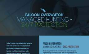 Falcon Overwatch – Managed Hunting
