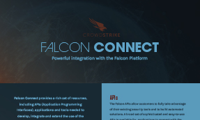 Falcon Connect – APIs & Integrations