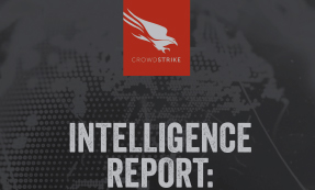 "CrowdStrike Falcon Intelligence Report On ""Boson Spider"" (Core Bot Banking Trojan)"