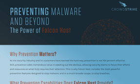 Preventing Malware And Beyond