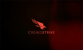 CrowdStrike video