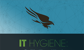 "IT Hygiene: The ""Who, What And Where"" Of Endpoint Protection"