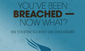 You've Been Breached —  Now What?
