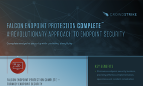 Falcon Endpoint Protection Complete