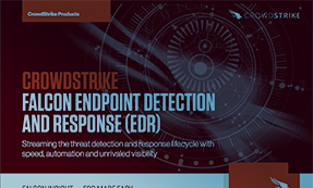 Falcon Insight: Endpoint Detection & Response (EDR)