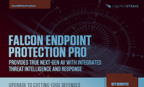 Falcon Endpoint Protection Pro