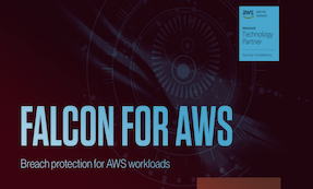 Falcon For AWS Datasheet