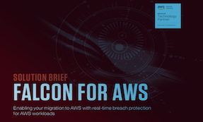 Falcon For AWS Solution Brief