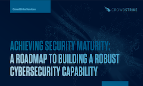Achieving Security Maturity