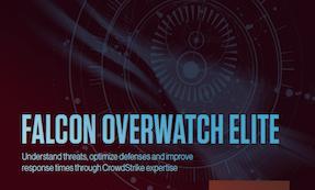 Falcon OverWatch Elite