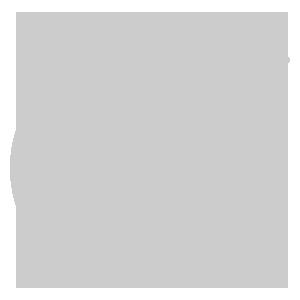 bullseye-target-grey