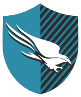 CrowdStrike Shield