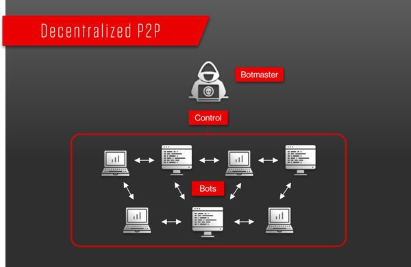visual depiction of a p2p botnet architecture
