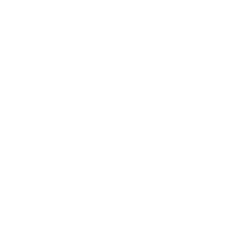 white BT logo