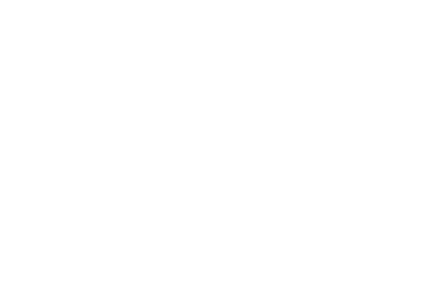 white king union logo